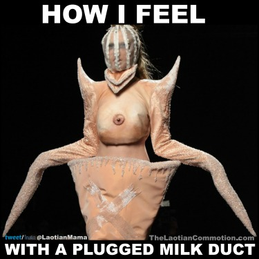 plugged-milk-duct-breastfeeding-meme1