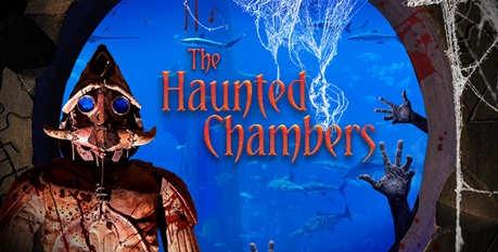 halloween-lost-chamber-2x1